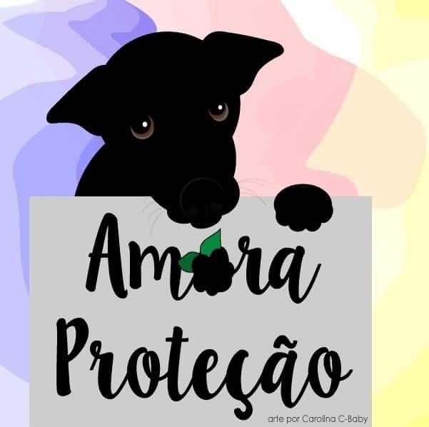 amora-protecao-animal-min